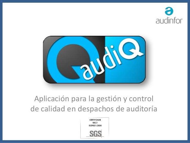 Aplicación para la gestión y control de calidad en despachos de auditoría