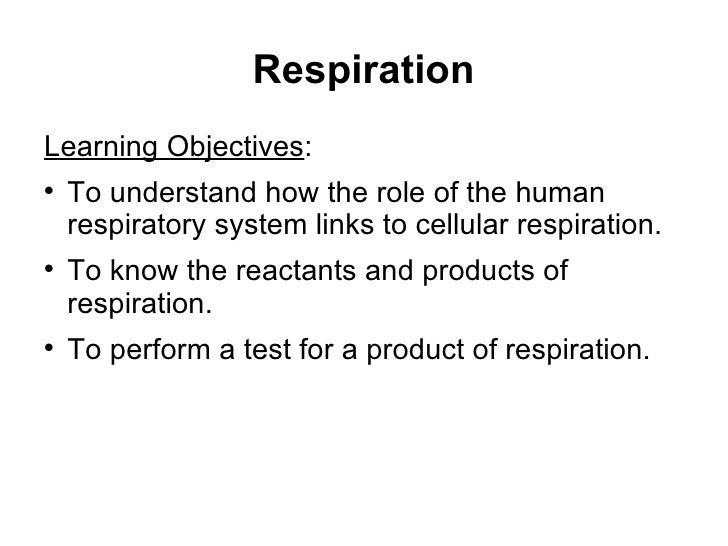 Respiration <ul><li>Learning Objectives : </li></ul><ul><li>To understand how the role of the human respiratory system lin...