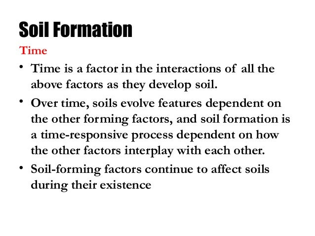 Soil class 8 science for Soil forming factors