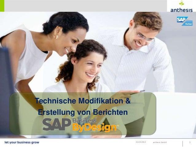 Technische Modifikation &Erstellung von Berichten                            22.03.2013   anthesis GmbH   1