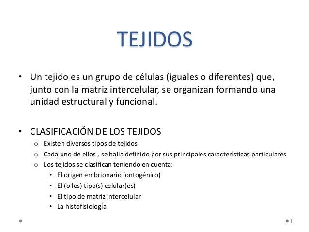 1 TEJIDOS • Un tejido es un grupo de células (iguales o diferentes) que, junto con la matriz intercelular, se organizan fo...