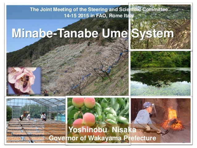 1 Minabe-Tanabe Ume System The Joint Meeting of the Steering and Scientific Committee 14-15 2015 in FAO, Rome Italy Yoshin...