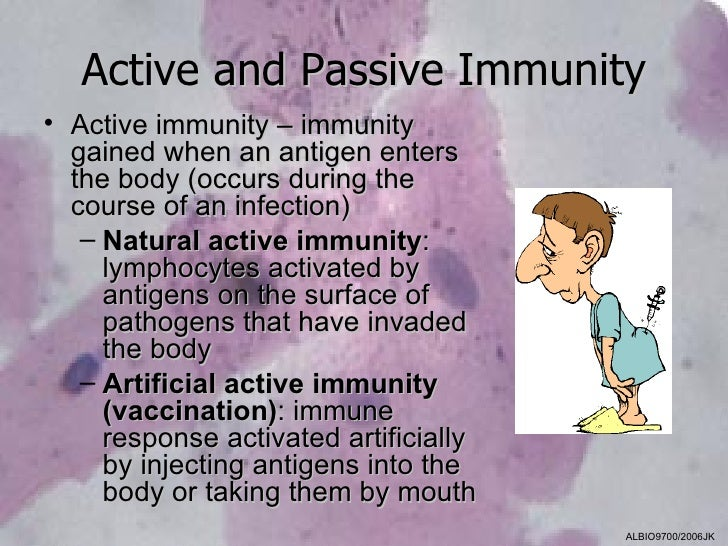 Active and Passive Immunity• Active immunity – immunity  gained when an antigen enters  the body (occurs during the  cours...