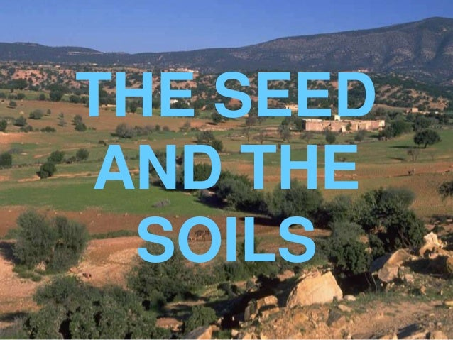 THE SEED AND THE SOILS