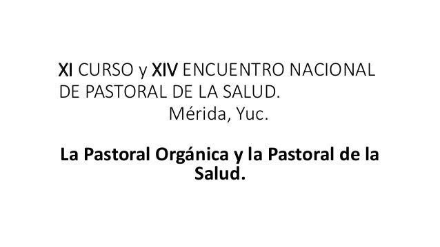 XI CURSO y XIV ENCUENTRO NACIONAL  DE PASTORAL DE LA SALUD.  Mérida, Yuc.  La Pastoral Orgánica y la Pastoral de la  Salud...