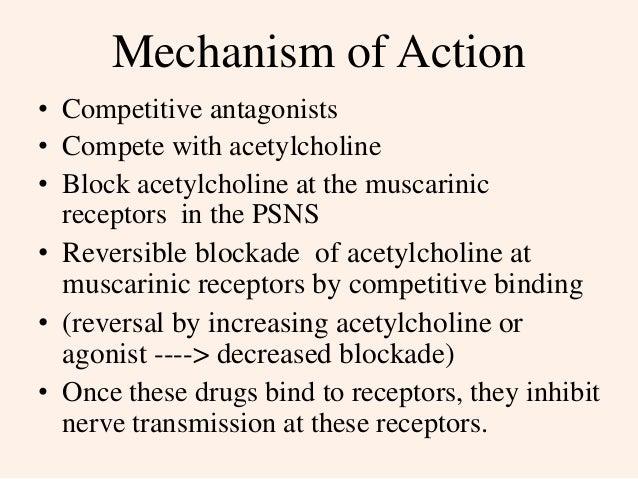 anti-cholinergic drugs, Skeleton