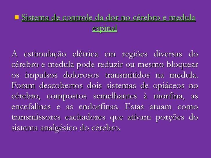 <ul><li>Sistema de controle da dor no cérebro e medula espinal </li></ul><ul><li>A estimulação elétrica em regiões diversa...