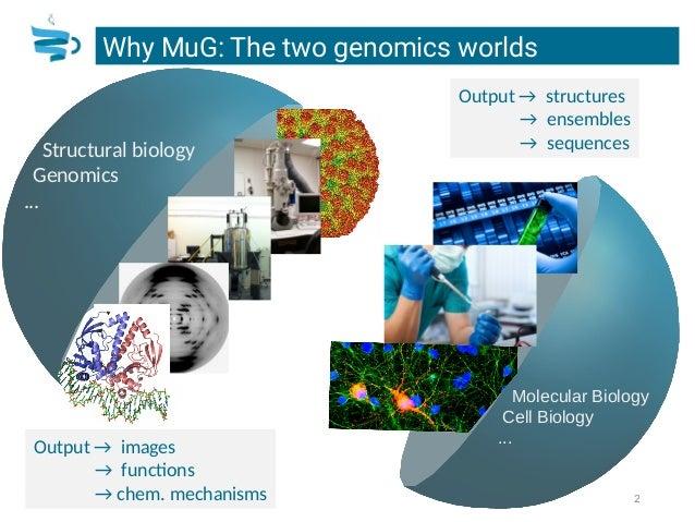 Laia Codo: Multi Scale Genomics (MuG) project Slide 2