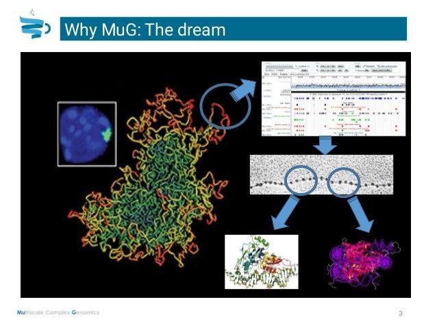 Laia Codo: Multi Scale Genomics (MuG) project Slide 3