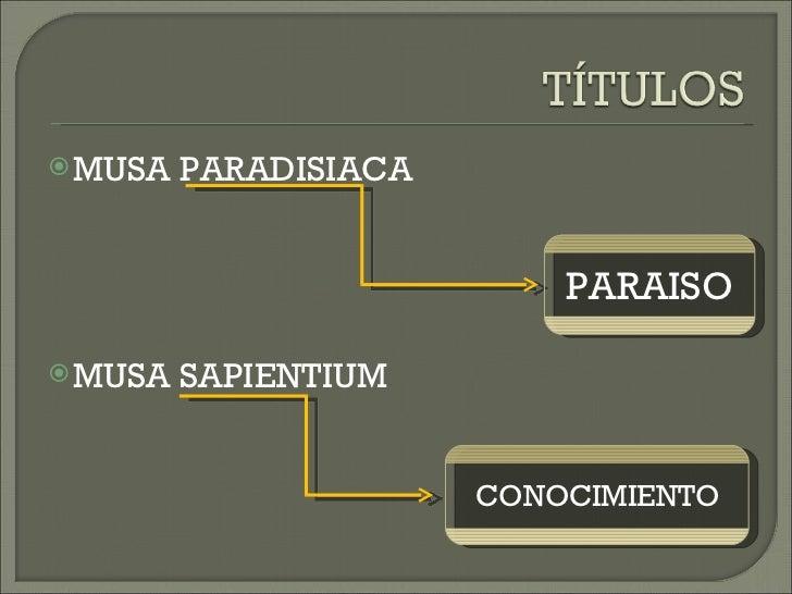 <ul><li>MUSA PARADISIACA </li></ul><ul><li>MUSA SAPIENTIUM </li></ul>PARAISO CONOCIMIENTO