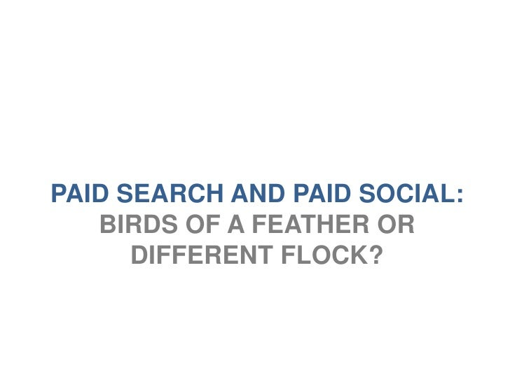PAID SEARCH AND PAID SOCIAL:   BIRDS OF A FEATHER OR      DIFFERENT FLOCK?