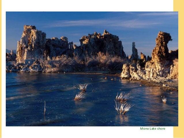 Mono Lake shore