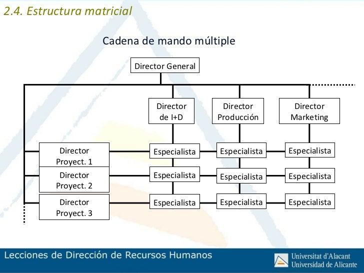 03 Estructuras Organizativas Y Rentabilidad