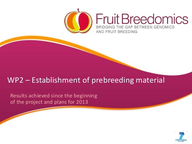 WP2 – Establishment of prebreeding material Results achieved since the beginning of the project and plans for 2013