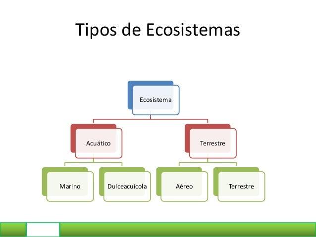 Tipos de Ecosistemas Ecosistema Acuático Marino Dulceacuícola Terrestre Aéreo Terrestre