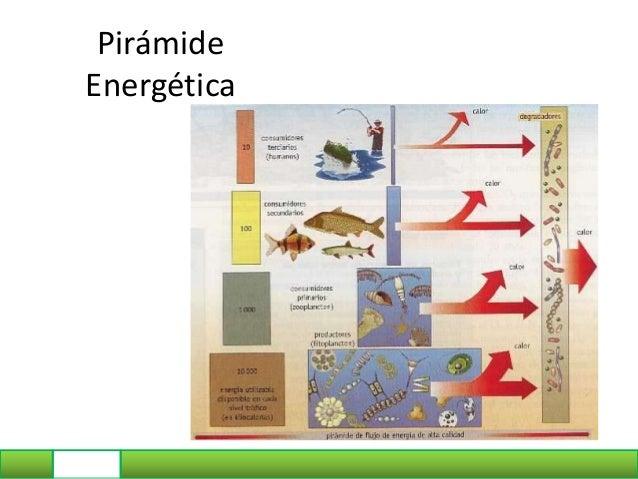 Pirámide de Energía