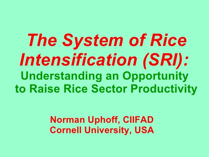 The System of Rice Intensification (SRI):   Understanding an Opportunity  to Raise Rice Sector Productivity Norman Uphoff,...