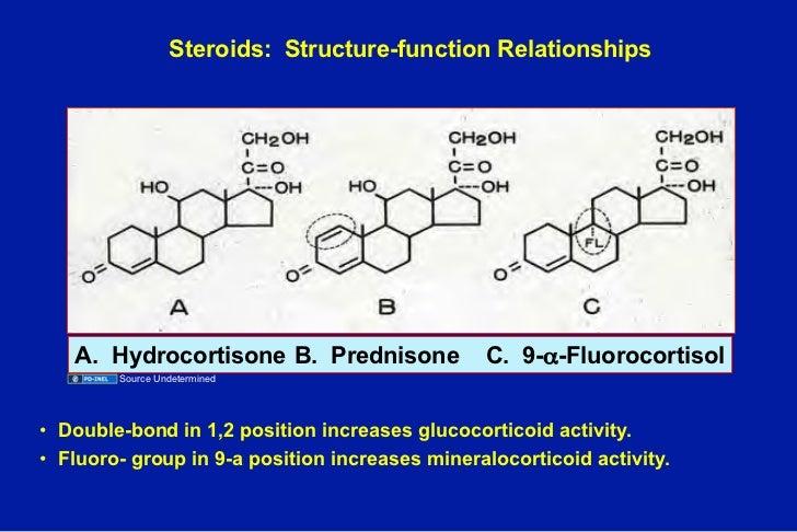 fludrocortisone steroids side effects