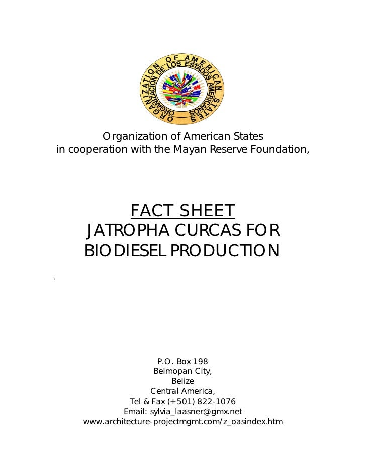 Organization of American States    in cooperation with the Mayan Reserve Foundation,              FACT SHEET         JATRO...