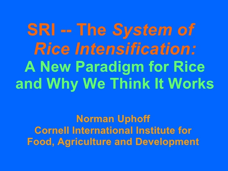 SRI -- The  System of  Rice Intensification: A New Paradigm for Rice and Why We Think It Works Norman Uphoff Cornell Inter...