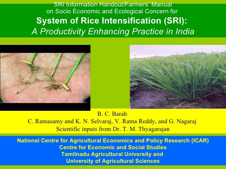 SRI Information Handout/Farmers' Manual on Socio Economic and Ecological Concern for  System of Rice Intensification (SRI)...