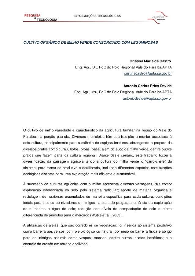 CULTIVO ORGÂNICO DE MILHO VERDE CONSORCIADO COM LEGUMINOSAS Cristina Maria de Castro Eng. Agr., Dr., PqC do Polo Regional ...