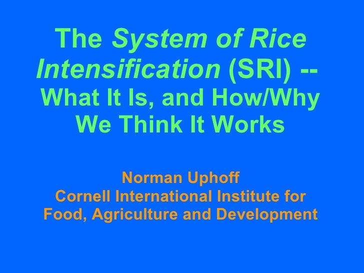 The  System of Rice Intensification  (SRI) --  What It Is, and How/Why We Think It Works Norman Uphoff Cornell Internation...