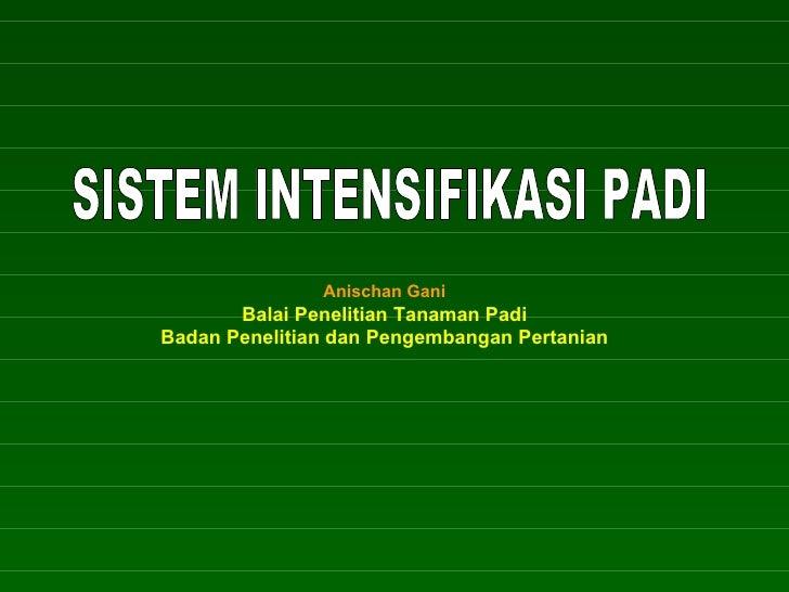 SISTEM INTENSIFIKASI PADI Anischan Gani Balai Penelitian Tanaman Padi Badan Penelitian dan Pengembangan Pertanian