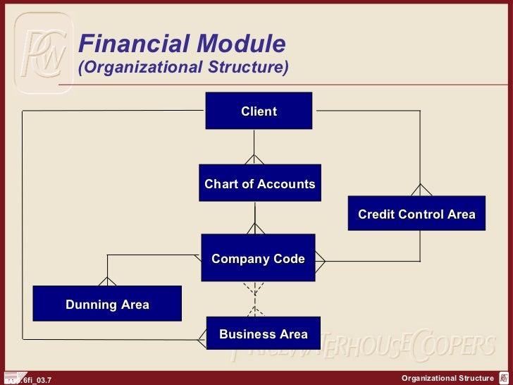 SAP FI Organization Structure http sapdocs info