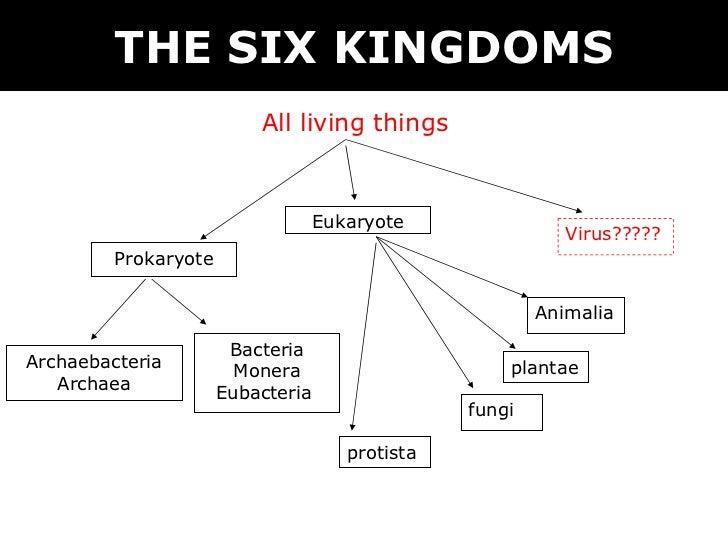 Venn Diagram Of Prokaryotes Eukaryotes And Viruses Ukran