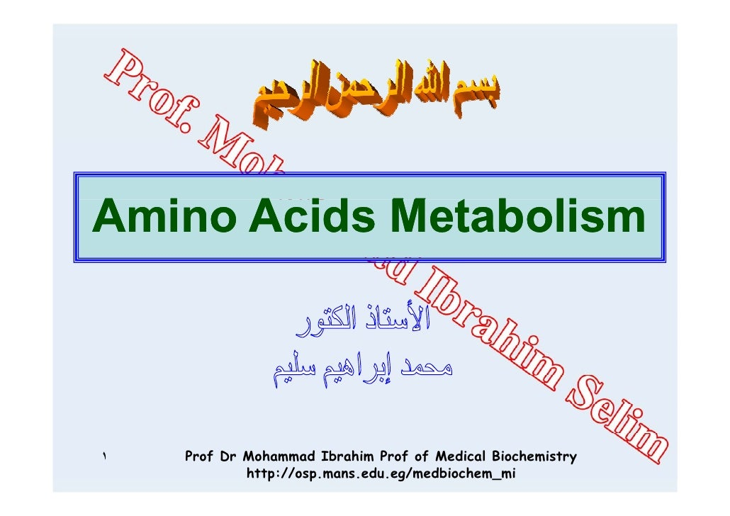 Amino Acids M t b liA i A id Metabolism١   Prof Dr Mohammad Ibrahim Prof of Medical Biochemistry            http://osp.man...