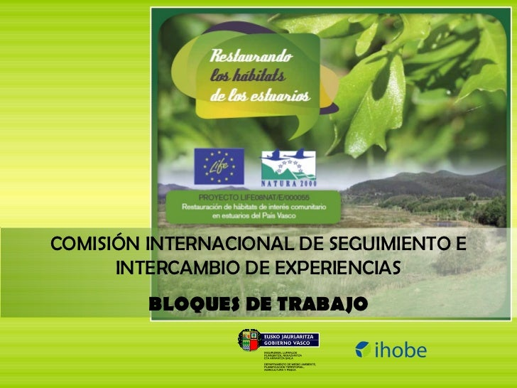 COMISIÓN INTERNACIONAL DE SEGUIMIENTO E INTERCAMBIO DE EXPERIENCIAS BLOQUES DE TRABAJO