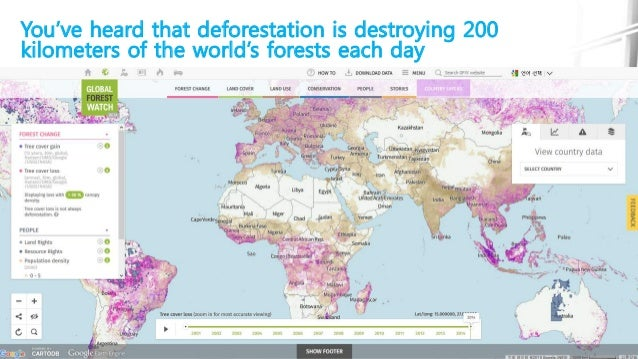 You've heard that deforestation is destroying 200 kilometers of the world's forests each day