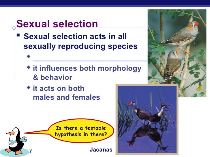 Can Natural Selection Act On Behavior
