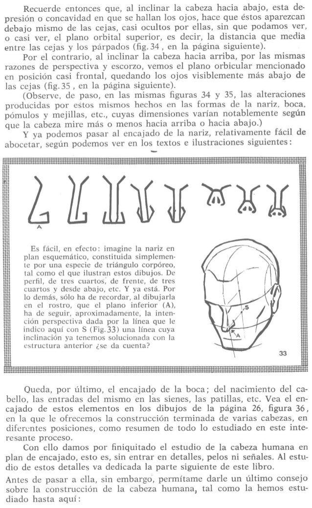Recuerde entonces que,  al inclinar la cabeza hacia abajo,  esta de- presión o concavidad en que se hallan los ojos,  hace...