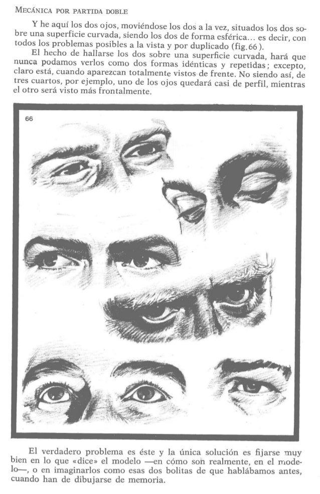 Lo dicho sobre la nariz es aplicable,  también,  a las orejas —¿quién es capaz de dibujar una oreja de memoria,  exactamen...