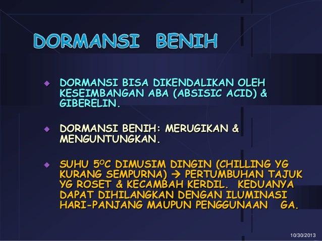 DORMANSI BENIH DOWNLOAD