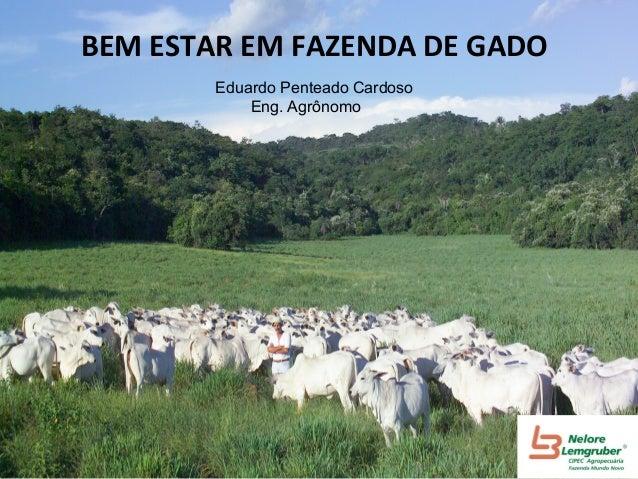 BEM  ESTAR  EM  FAZENDA  DE  GADO   Eduardo Penteado Cardoso Eng. Agrônomo
