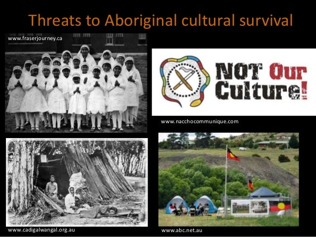 cultural policy in australia Australian local governments' investment in cultural infrastructure and activity cultural development is a growing area of focus for local government across australia, with councils increasingly investing in cultural infrastructure, staff and programs over the last decades.