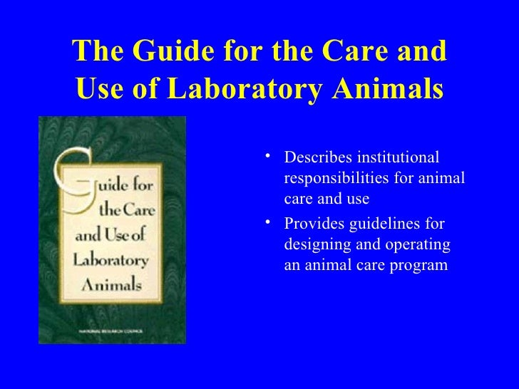 ethics and animals Ethical theories and nonhuman animals ethics is a critical reflection on how we should act and why animal ethics is the field of ethics that deals with how and why.