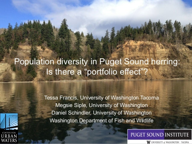 "Population diversity in Puget Sound herring: Is there a ""portfolio effect""? Tessa Francis, University of Washington Tacoma..."