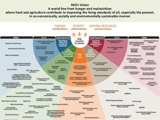 the development of sustainability leadership framework