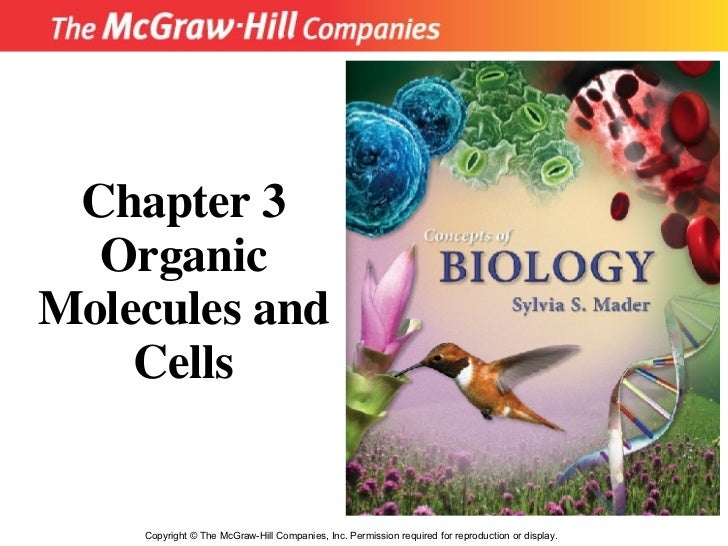 Copyright  ©  The McGraw-Hill Companies, Inc. Permission required for reproduction or display. Chapter 3 Organic Molecules...