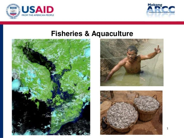 Fisheries & Aquaculture                          1