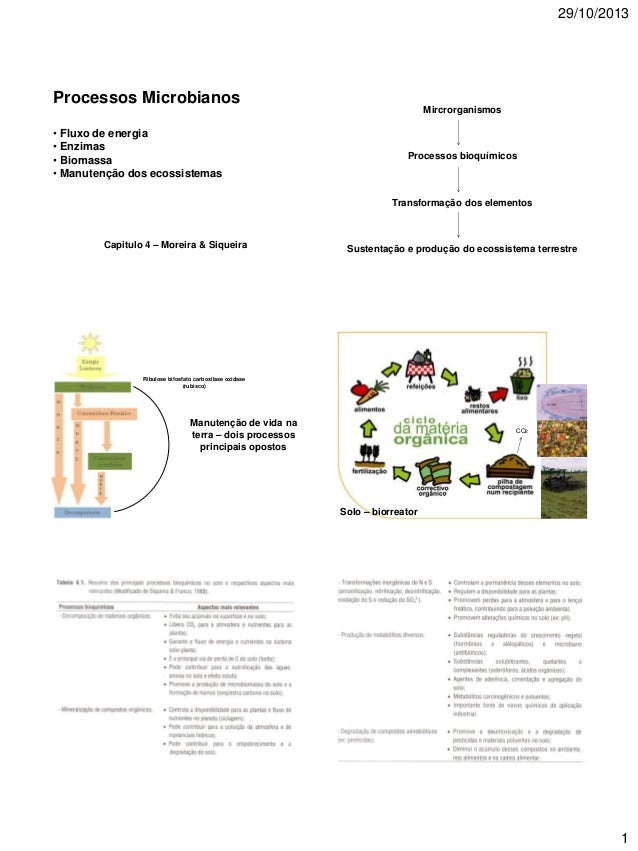 29/10/2013  Processos Microbianos • Fluxo de energia • Enzimas • Biomassa • Manutenção dos ecossistemas  Mircrorganismos  ...