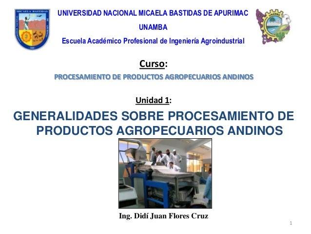 UNIVERSIDAD NACIONAL MICAELA BASTIDAS DE APURIMAC                              UNAMBA      Escuela Académico Profesional d...