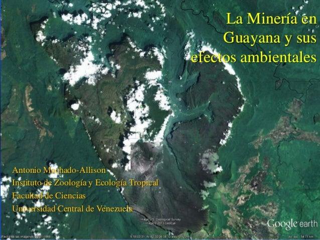 La Minería en                                                 Guayana y sus                                            efe...