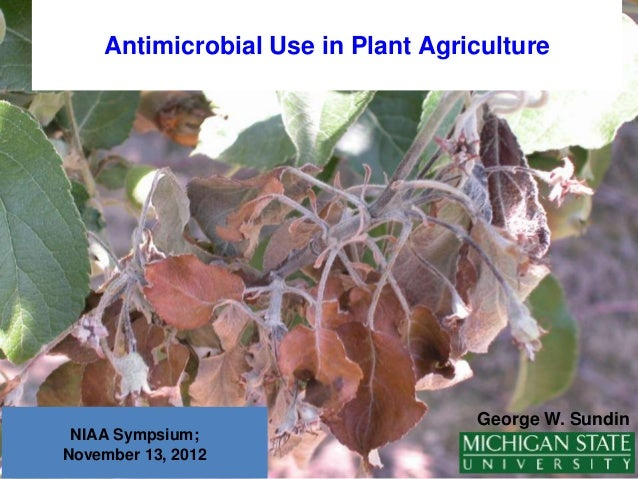 Antimicrobial Use in Plant Agriculture                                   George W. Sundin NIAA Sympsium;November 13, 2012