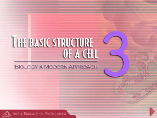 Introduction • Cells are the basic units of organisms – Cells can only be observed under microscope • Two basic types of c...