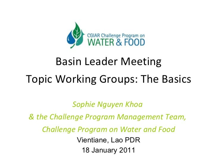 <ul><li>Basin Leader Meeting </li></ul><ul><li>Topic Working Groups: The Basics </li></ul><ul><li>Sophie Nguyen Khoa  </li...